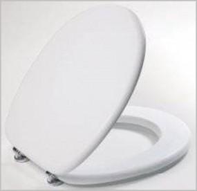 Toilettendeckel Farbe Weiss